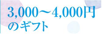 202005お中元値段6_3