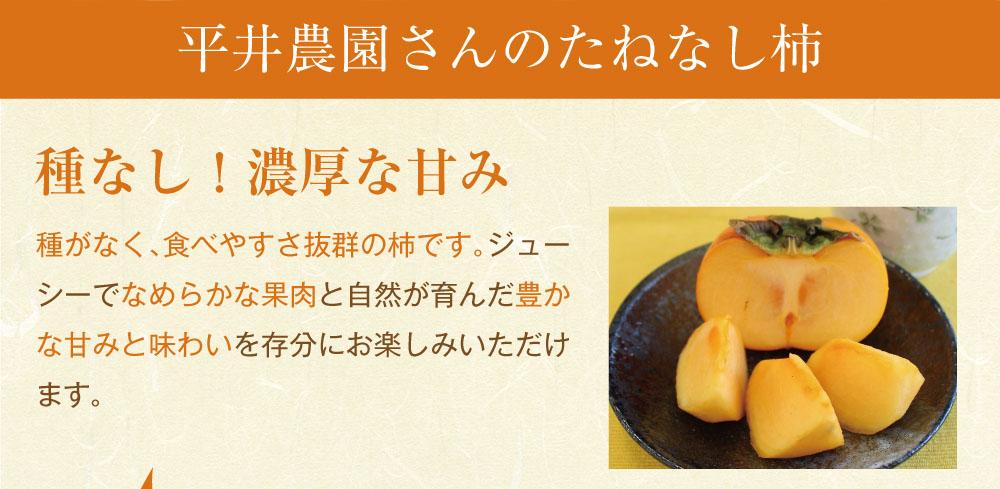 たねなし柿商品トップ