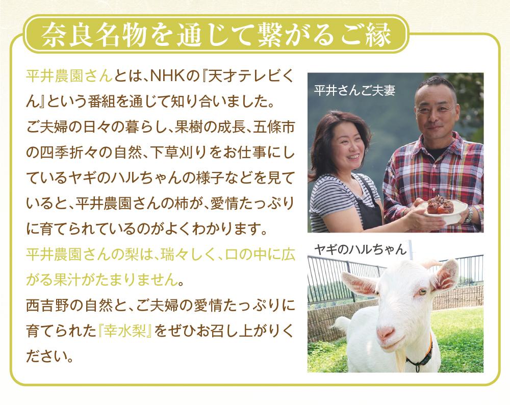 幸水梨商品トップ
