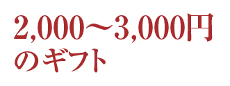 冬ギフト価格3000