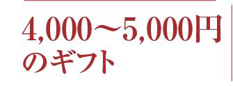 冬ギフト価格5000