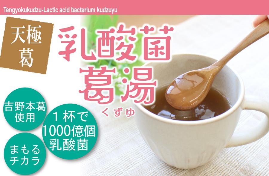 乳酸菌葛湯