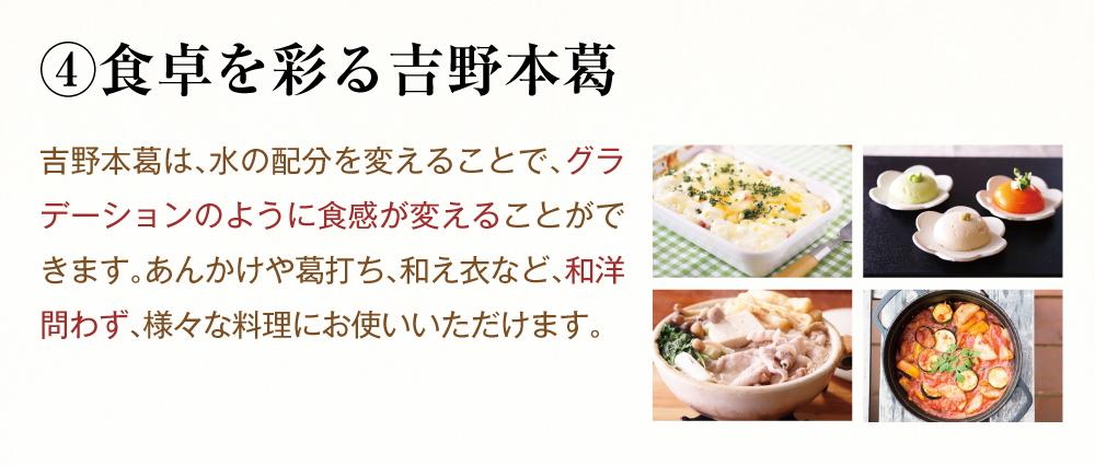 吉野本葛固形商品トップ8