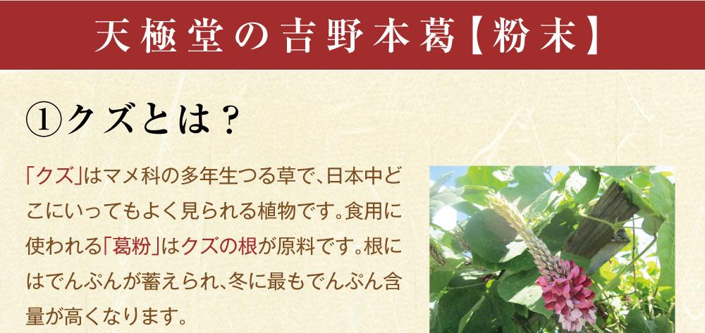 吉野本葛粉末商品トップ3