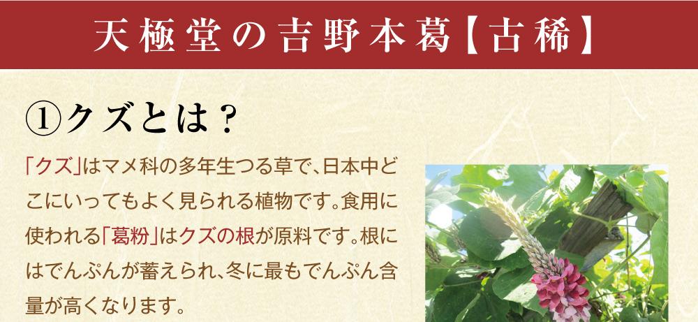 吉野本葛古稀商品トップ3